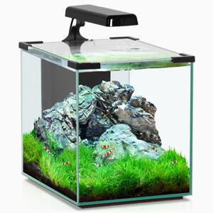 Comment choisir Eclairage LED aquarium ?