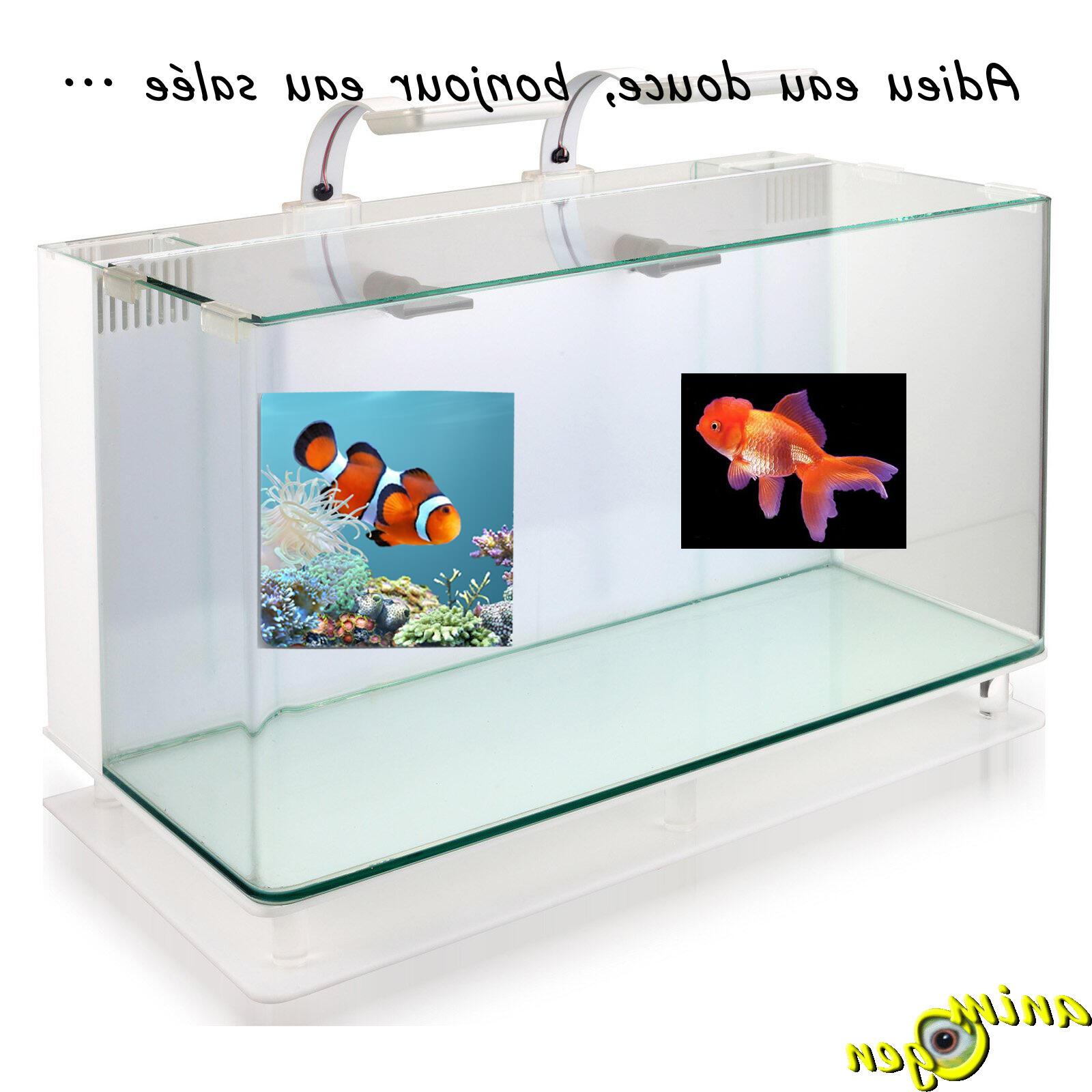 Comment transformer un aquarium d'eau douce en eau de mer ?