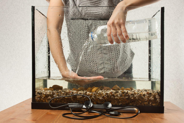 Où placer un aquarium en Feng Shui ?