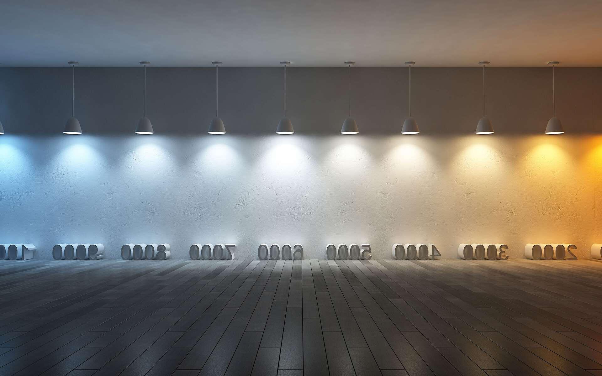 Quel type d éclairage pour une cave ?