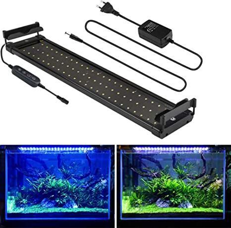 Quel type de lumière pour aquarium ?