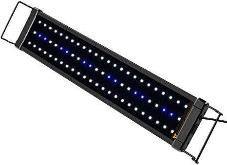 Quelle couleur de LED pour aquarium ?
