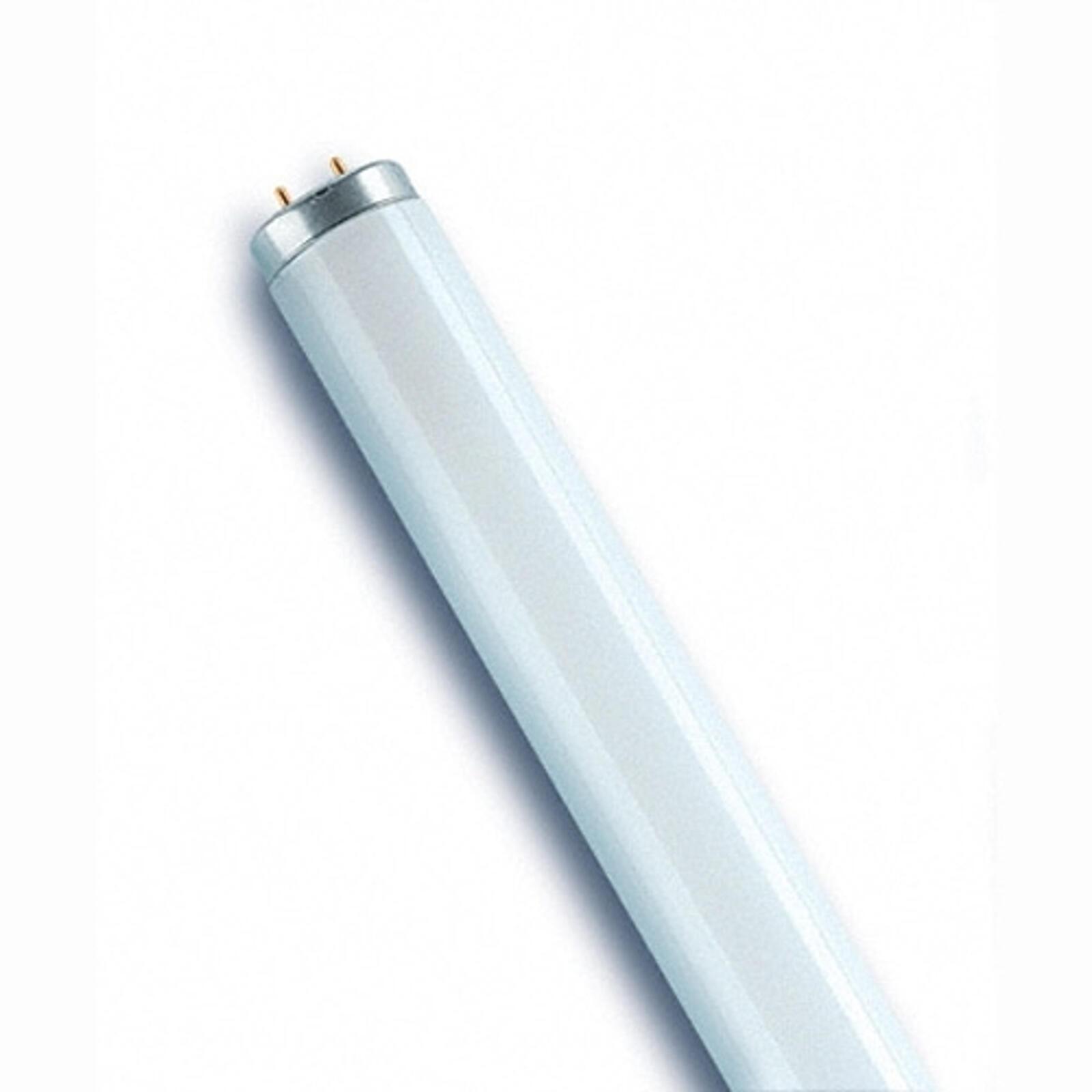 Qui a inventé l'ampoule néon ?