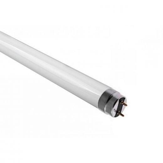 Qui a inventé le tube néon ?