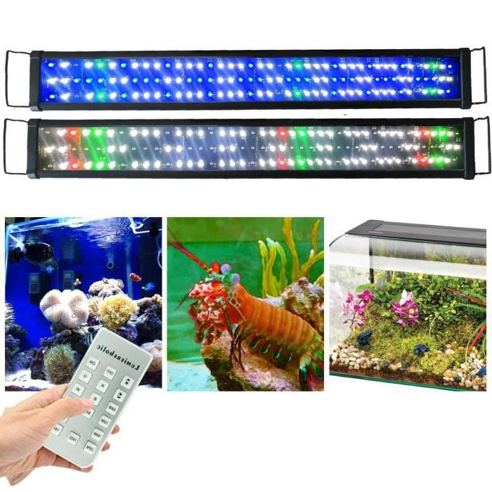 Quel éclairage LED pour aquarium plante ?