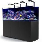 Quel eclairage led pour aquarium eau de mer ?