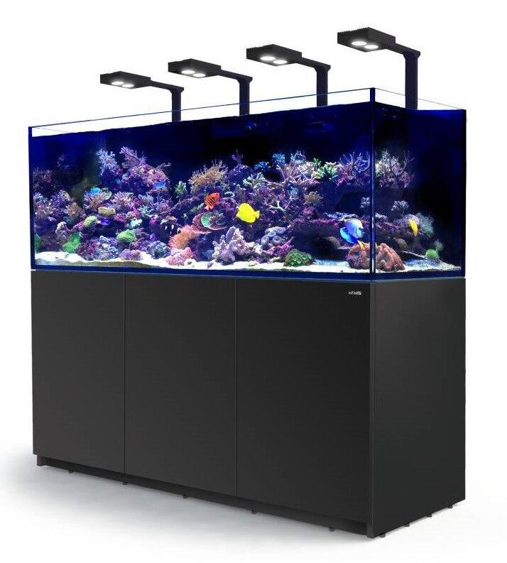 Quel est le meilleur éclairage pour aquarium ?